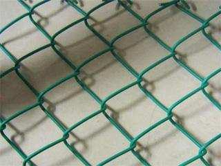 涂塑菱形网